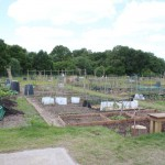 Church Crookham Allotments 3
